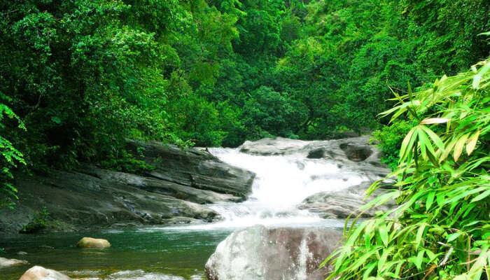 Kalar Meenmutty Waterfalls