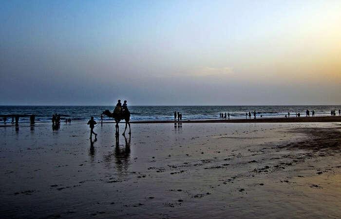 Sea shore of Mandvi beach