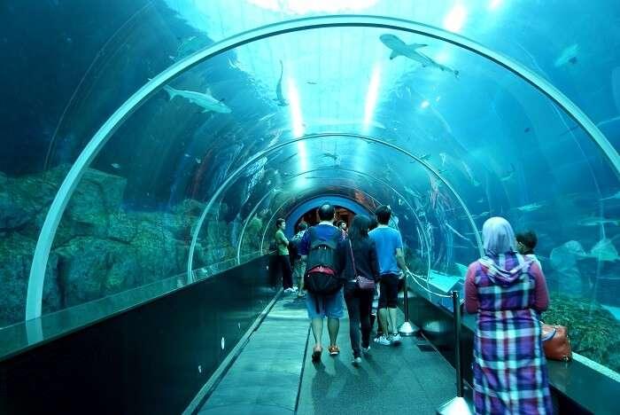 SEA Aquairium