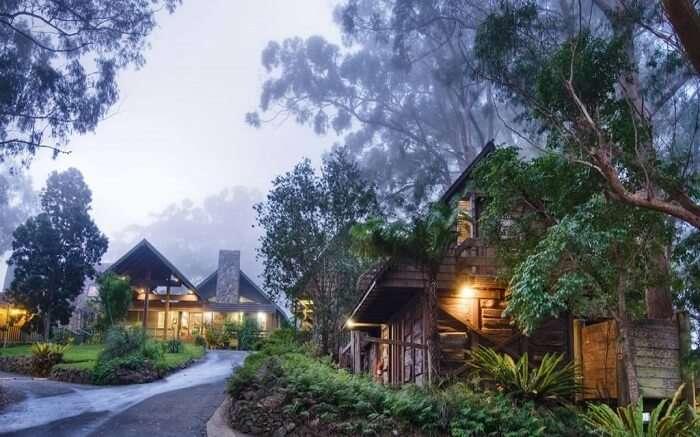a beautiful mountain lodge in a jungle ss01052017