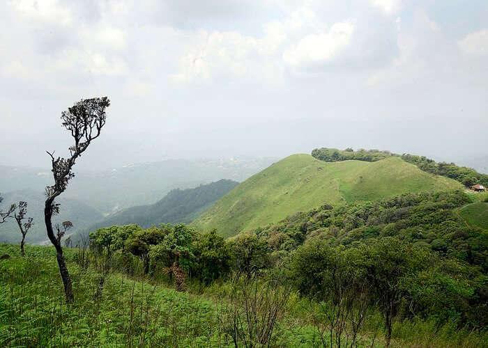 balphakram national park cherrapunji