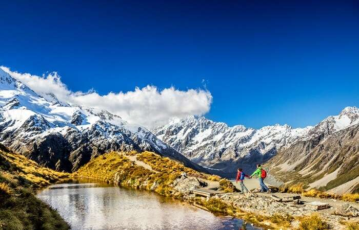 travelers in new zealand