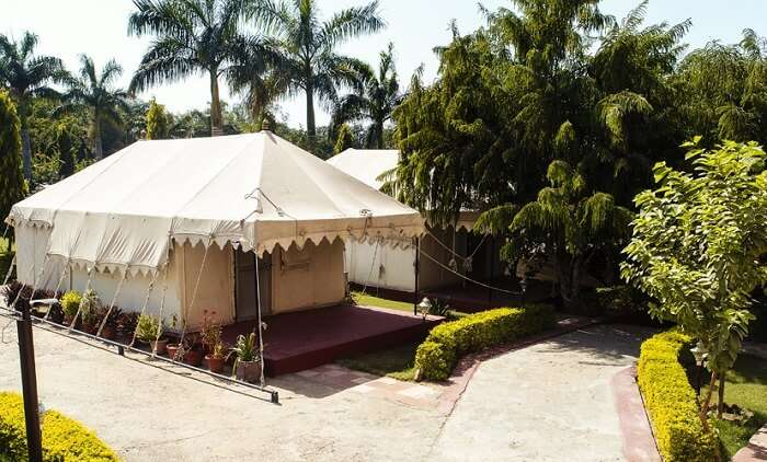 Ranthambore National Resort