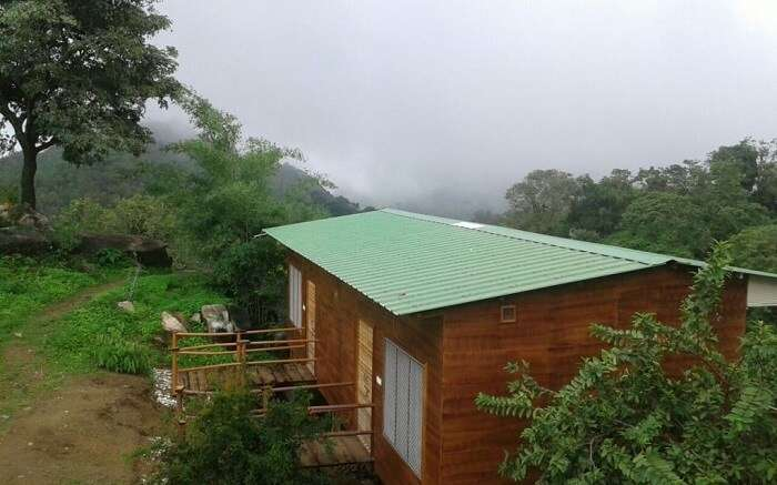 Forest Eco Lodge - Of verdant surrounding and exotic flora and fauna