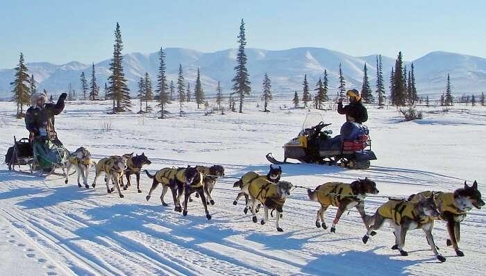 Iditarod_National_Historic_Trail_in_Alaska