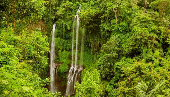 Sekumpul Waterfall in Bali_23rd oct