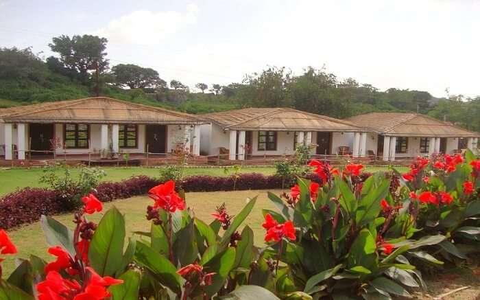 The Fern Ratan Villas - Paradise for nature lovers