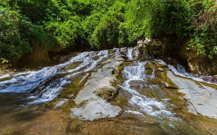 a small waterfall flowing inside a jungle