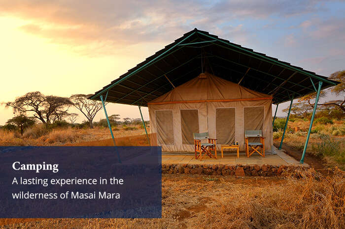 acj-2906-masai-mara-national-park (1)