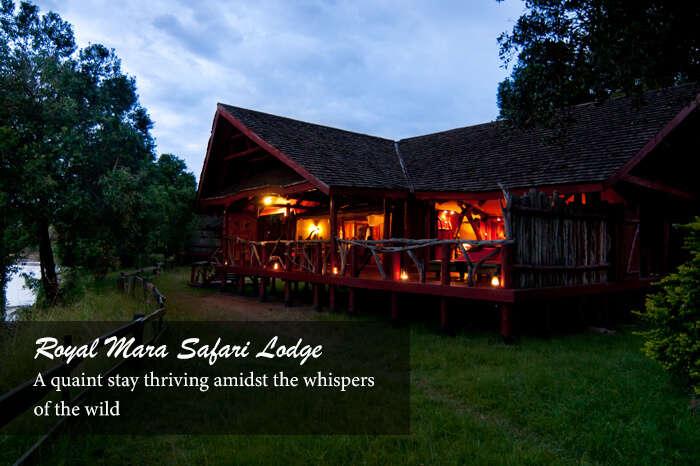 acj-2906-masai-mara-national-park (14)