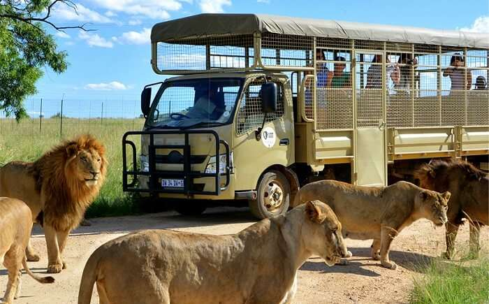 Johannesburg Tourist Attractions In South Africa