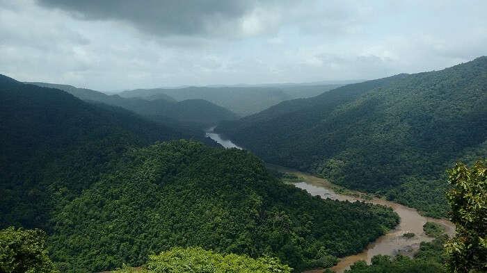 Dandeli Kali Greenery River