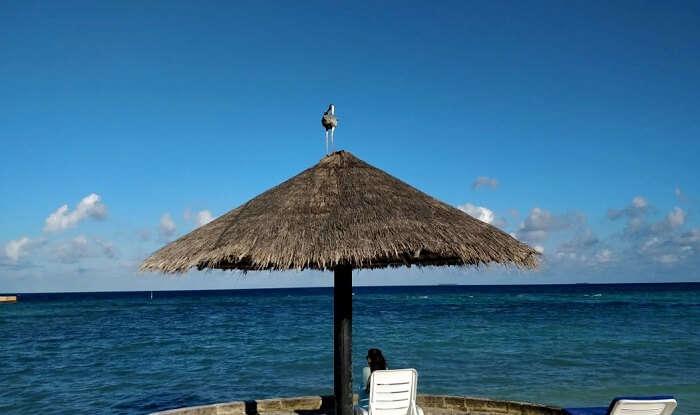 woman chilling at maldives beach