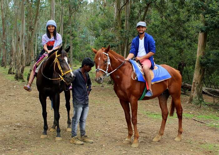horse riding in ooty