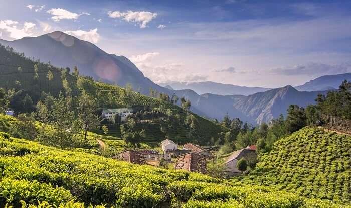 Kolukkumalai, Idukki, offbeat places in Kerala cover