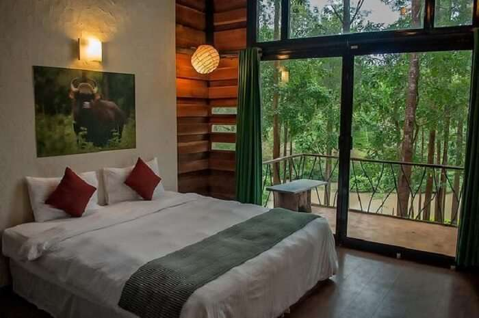 Simple décor, comfort, wholesome meals, safaris and treks you can enjoy