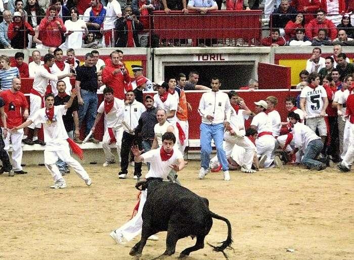 man during a bull run