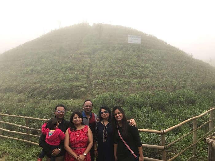 tea plantation sikkim