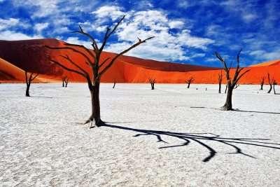The Namib Desert Africa