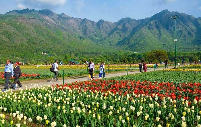 some of the best attractions in Kashmir