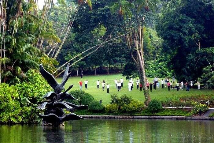 Swan Lake in Singapore