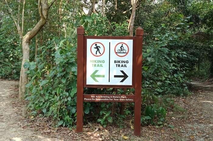 Chestnut Nature Park