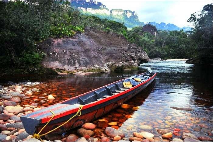 Jungle Rudy's Ucaima Camp