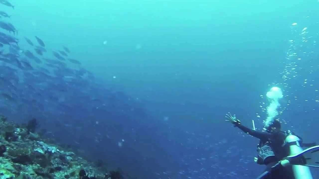 beginner diving in Maldives