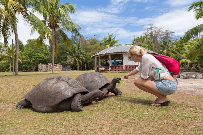 Praslin National Park, Seychelles