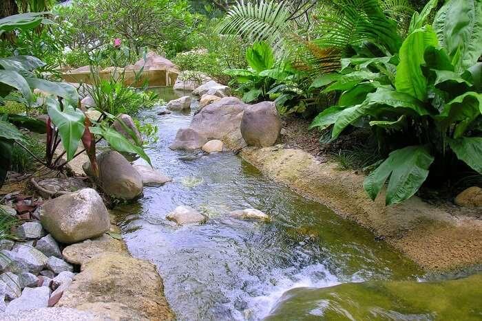 You can laze around the Saraca Stream