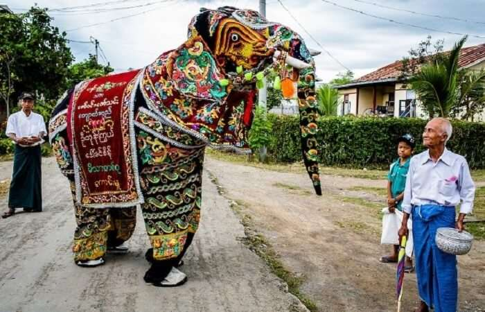 dressed up elephant meeting a man