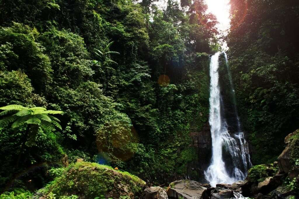 Waterfalls in Bali
