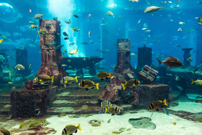 most loved sites for scuba diving
