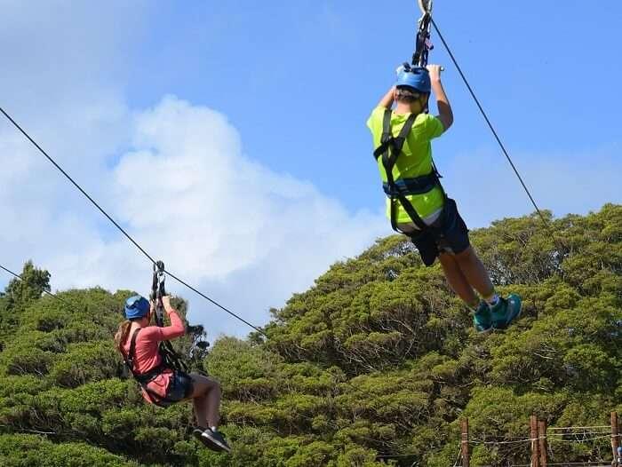 ziplining adventure in ile aux cerf