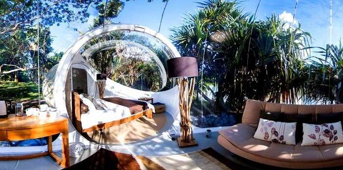 Inside view of a bubble lodge experience