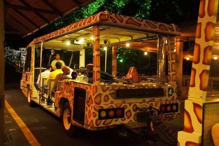 How To Get To Bali Safari Park