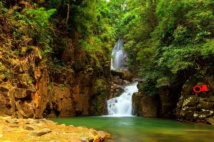 gorgeous waterfall, nature trails
