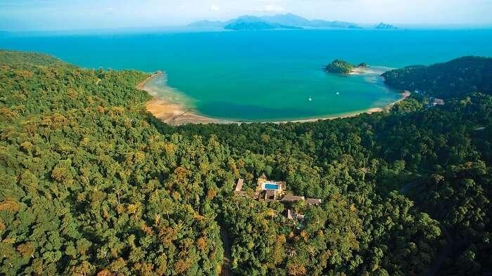 rain forest in Malaysia
