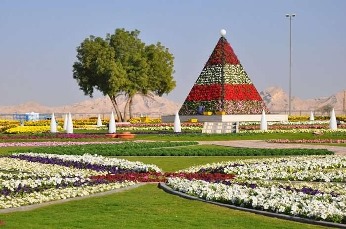 botanical garden in al ain
