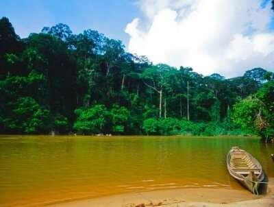 Incredible Similajau National Park