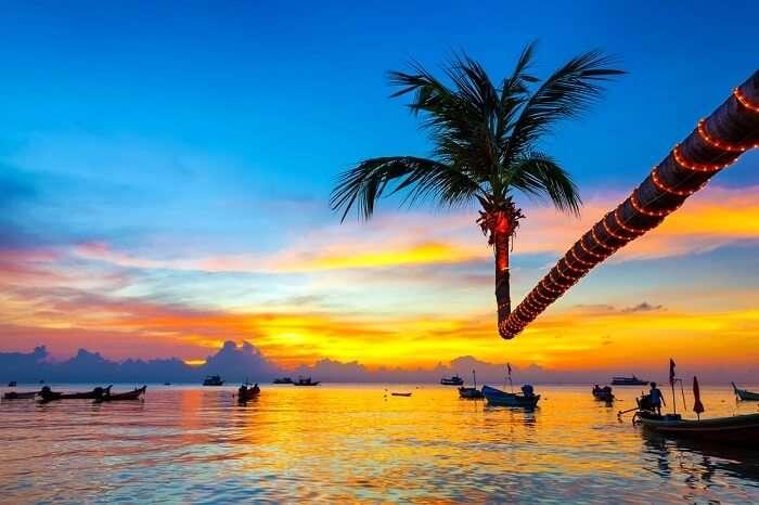 sunset on a koh tao beach