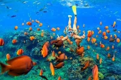 maldives reasons cover