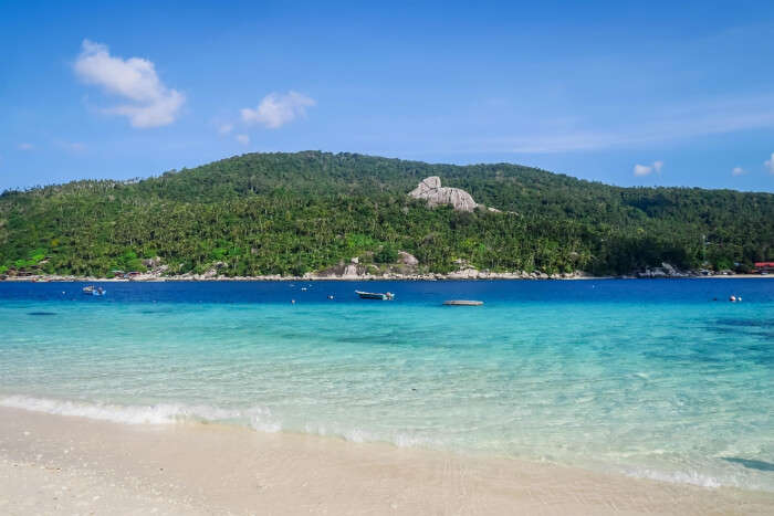 amazing sight of beach