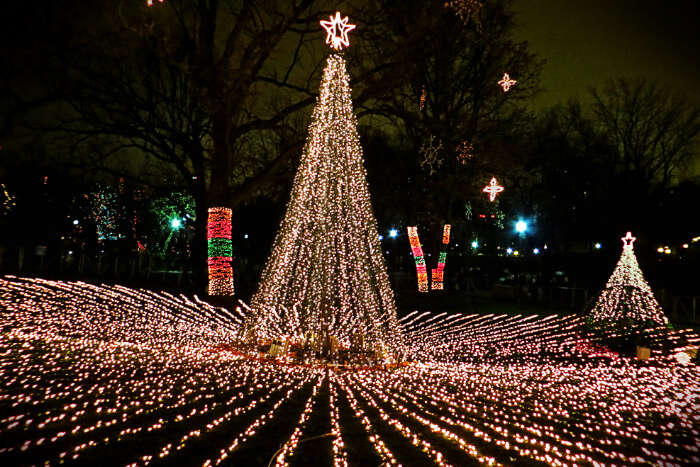 Dallas In Winter 10 Things You Must Do In This Texan City