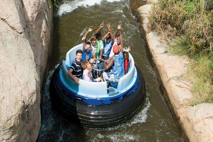 experience the excitement on rides