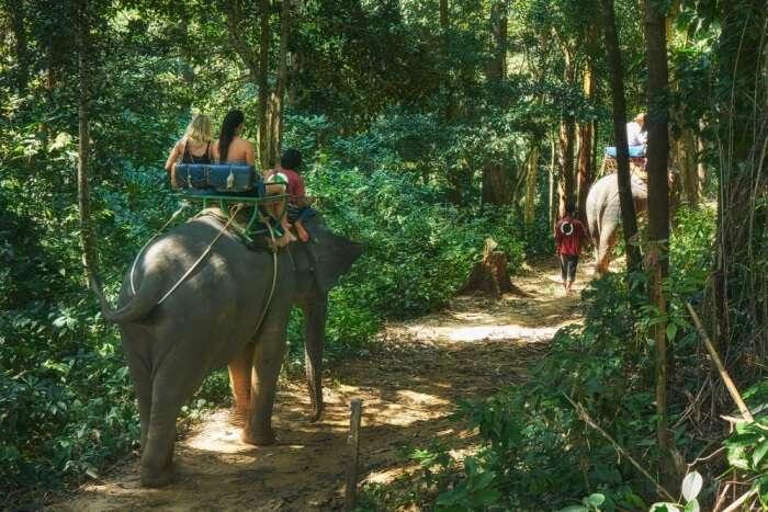 Khao Phenom Bencha National Park