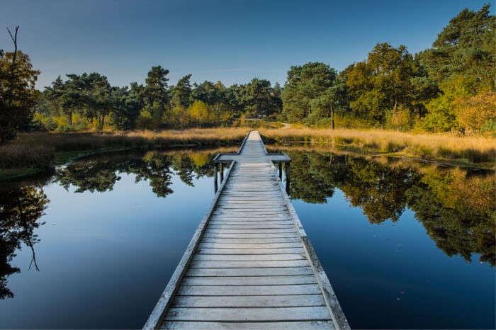national parks in Netherlands