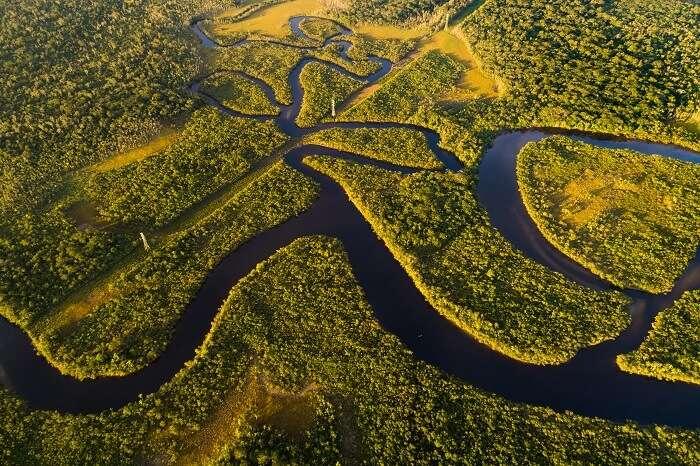 River In Brazil Cover