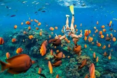 Amazing Spots for Snorkeling In Cambodia