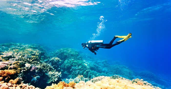 Surreal Spots For Scuba Diving In Cambodia